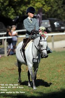 Picture for category Side Saddle Habits